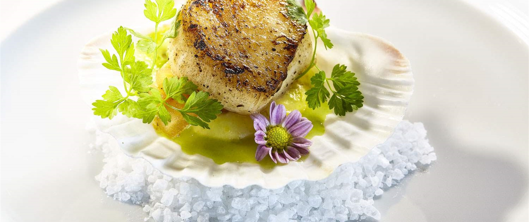 Single scallop in a shell over salt